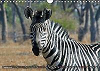 Sambia - ein großartiges Land (Wandkalender 2019 DIN A4 quer) - Produktdetailbild 4
