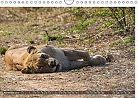 Sambia - ein großartiges Land (Wandkalender 2019 DIN A4 quer) - Produktdetailbild 6