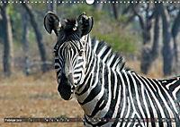 Sambia - ein großartiges Land (Wandkalender 2019 DIN A3 quer) - Produktdetailbild 2