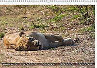 Sambia - ein grossartiges Land (Wandkalender 2019 DIN A3 quer) - Produktdetailbild 11