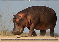 Sambia - ein großartiges Land (Wandkalender 2019 DIN A2 quer) - Produktdetailbild 6