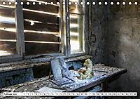 Sammy der Bär besucht Lost Places (Tischkalender 2019 DIN A5 quer) - Produktdetailbild 2