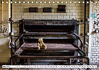 Sammy der Bär besucht Lost Places (Tischkalender 2019 DIN A5 quer) - Produktdetailbild 3