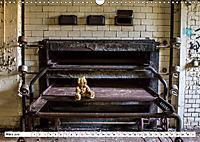 Sammy der Bär besucht Lost Places (Wandkalender 2019 DIN A3 quer) - Produktdetailbild 3