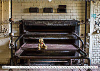 Sammy der Bär besucht Lost Places (Wandkalender 2019 DIN A2 quer) - Produktdetailbild 3