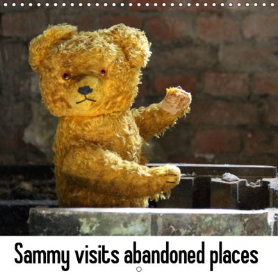 Sammy visits abandoned places (Wall Calendar 2019 300 × 300 mm Square), SchnelleWelten