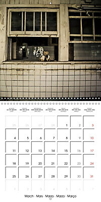 Sammy visits abandoned places (Wall Calendar 2019 300 × 300 mm Square) - Produktdetailbild 3