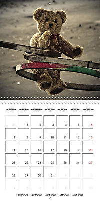Sammy visits abandoned places (Wall Calendar 2019 300 × 300 mm Square) - Produktdetailbild 10