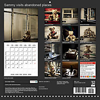 Sammy visits abandoned places (Wall Calendar 2019 300 × 300 mm Square) - Produktdetailbild 13