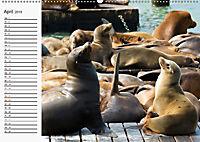 San Francisco PerspektivenCH-Version (Wandkalender 2019 DIN A2 quer) - Produktdetailbild 4