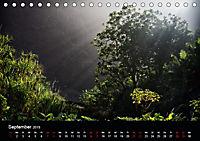 Santo Antao, Perle der Kapverden (Tischkalender 2019 DIN A5 quer) - Produktdetailbild 9