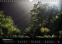 Santo Antao, Perle der Kapverden (Wandkalender 2019 DIN A4 quer) - Produktdetailbild 9