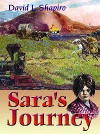 Sara's Journey, David L. Shapiro