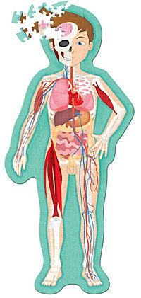 Sassi - Der Menschliche Körper - Puzzle und Buch - Produktdetailbild 1