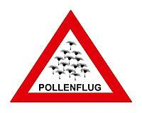 Satellitengestütze Wetterstation mit Pollenvorhersage WD9565 - Produktdetailbild 2