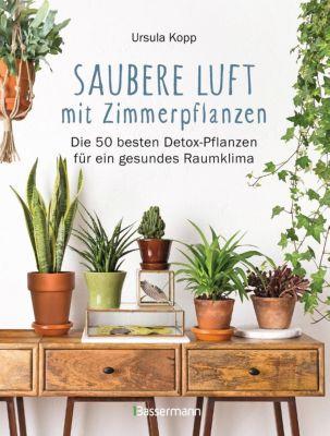 Saubere Luft mit Zimmerpflanzen - Ursula Kopp |