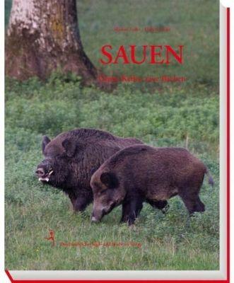 Sauen