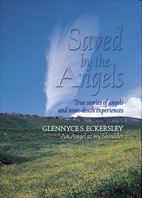 Saved By The Angels, Glennyce S. Eckersley