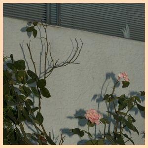 Savior (Vinyl), Soft Kill