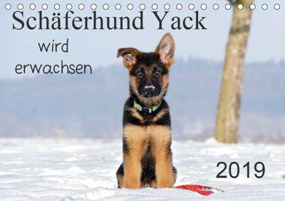 Schäferhund Yack wird erwachsen (Tischkalender 2019 DIN A5 quer), Petra Schiller