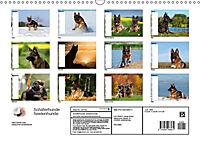 Schäferhunde SeelenhundeCH-Version (Wandkalender 2019 DIN A3 quer) - Produktdetailbild 13