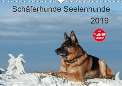 Schäferhunde SeelenhundeCH-Version (Wandkalender 2019 DIN A3 quer), Petra Schiller