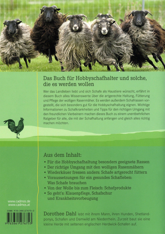 Schafe buch von dorothee dahl jetzt bei bestellen for Schafe halten im garten