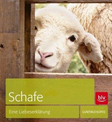 Schafe - Gunthild Kupitz  