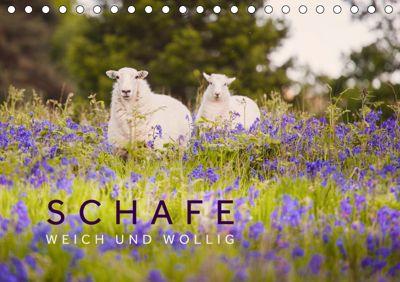 Schafe - Weich und wollig (Tischkalender 2019 DIN A5 quer), Lain Jackson
