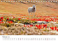 Schafe - Weich und wollig (Tischkalender 2019 DIN A5 quer) - Produktdetailbild 2