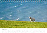 Schafe - Weich und wollig (Tischkalender 2019 DIN A5 quer) - Produktdetailbild 3