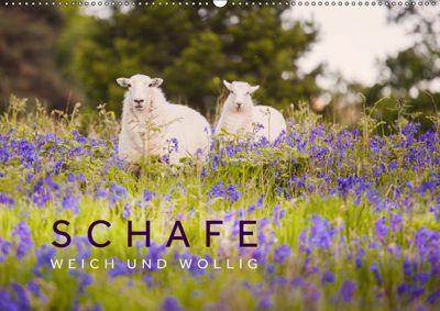 Schafe - Weich und wollig (Wandkalender 2019 DIN A2 quer), Lain Jackson