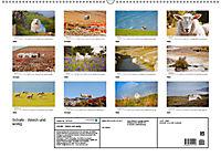 Schafe - Weich und wollig (Wandkalender 2019 DIN A2 quer) - Produktdetailbild 13
