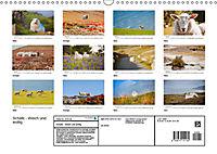 Schafe - Weich und wollig (Wandkalender 2019 DIN A3 quer) - Produktdetailbild 13