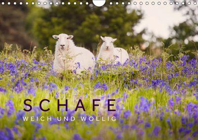 Schafe - Weich und wollig (Wandkalender 2019 DIN A4 quer), Lain Jackson