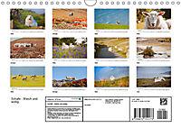 Schafe - Weich und wollig (Wandkalender 2019 DIN A4 quer) - Produktdetailbild 13