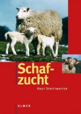 Schafzucht, Knut Strittmatter