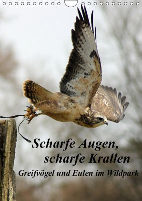 Scharfe Krallen, scharfe Augen, Greifvögel und Eulen im Wildpark (Wandkalender 2019 DIN A4 hoch), Marion Bönner