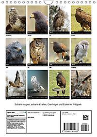 Scharfe Krallen, scharfe Augen, Greifvögel und Eulen im Wildpark (Wandkalender 2019 DIN A4 hoch) - Produktdetailbild 13