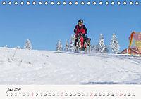 Schlittenhundesport (Tischkalender 2019 DIN A5 quer) - Produktdetailbild 7