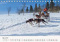 Schlittenhundesport (Tischkalender 2019 DIN A5 quer) - Produktdetailbild 5