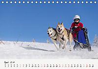Schlittenhundesport (Tischkalender 2019 DIN A5 quer) - Produktdetailbild 4