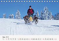 Schlittenhundesport (Tischkalender 2019 DIN A5 quer) - Produktdetailbild 3