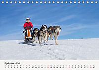 Schlittenhundesport (Tischkalender 2019 DIN A5 quer) - Produktdetailbild 9
