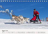 Schlittenhundesport (Tischkalender 2019 DIN A5 quer) - Produktdetailbild 8