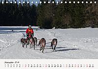 Schlittenhundesport (Tischkalender 2019 DIN A5 quer) - Produktdetailbild 12