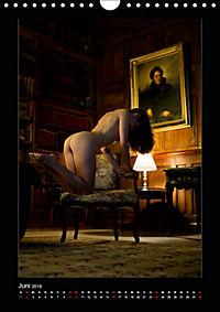 Schlossdamen - Aktbilder in historischen Räumen (Wandkalender 2019 DIN A4 hoch) - Produktdetailbild 6