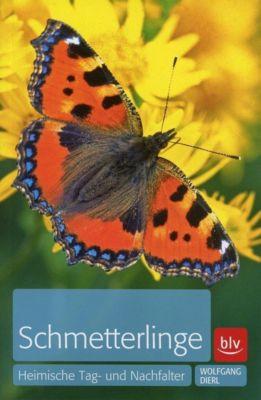 Schmetterlinge - Wolfgang Dierl |
