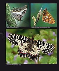 Schmetterlinge - Produktdetailbild 4