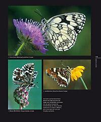 Schmetterlinge - Produktdetailbild 1